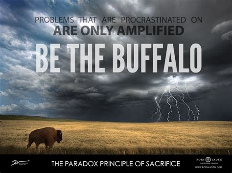 image result  buffalos   storm storm quotes life