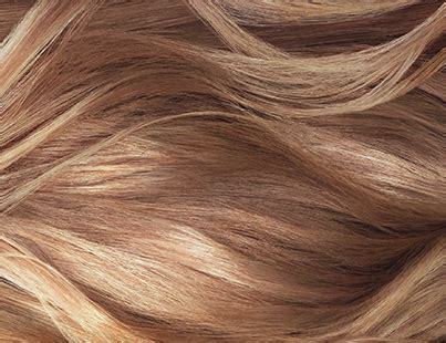 Pictures Of Shades Of Hair by Hair Color Products And Trends L Or 233 Al