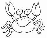 Crab Coloring Fiddler Colorat Desene Colorear Cangrejo Cu Crabi Animal Colouring Mar Caranguejo Feliz Ketam Encek Hermie Facts Mariscos Designlooter sketch template