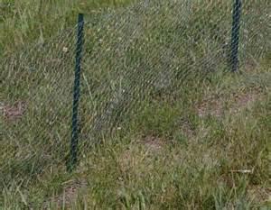 Install Chicken Wire Fence