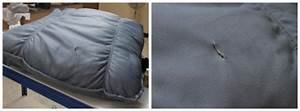 Comment Réparer Un Canapé En Cuir Déchiré : comment r parer une d chirure ou un trou dans le cuir guide astuces ~ Mglfilm.com Idées de Décoration