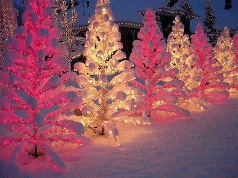 christmas snow winter xmas christmas tree lights cold tree