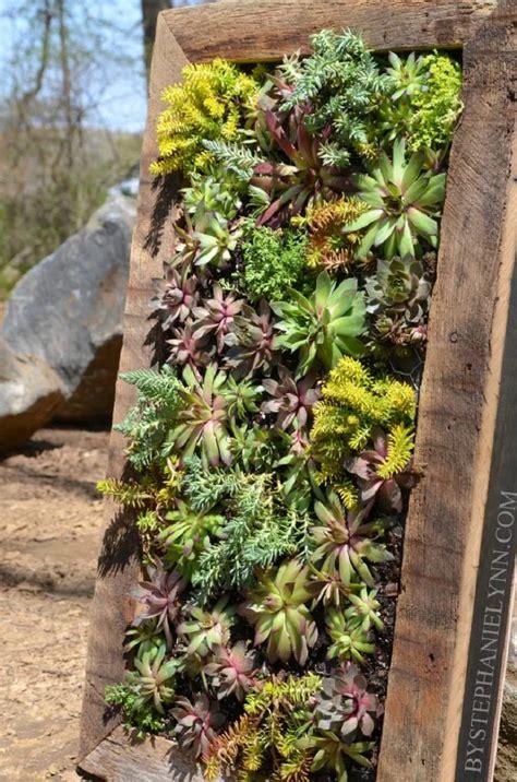 how to build a wall garden top 10 diy outdoor succulent garden ideas top inspired