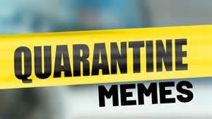 quarantine memes  laughs   social distancing
