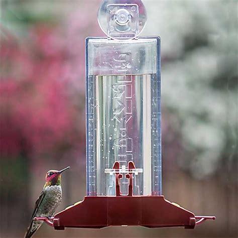 perky pet window hummingbird feeder wide mouth design
