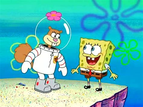 Spongebob Sandy Gallery