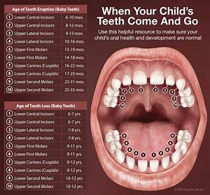 Pediatric Dentistry Bellingham  Wa