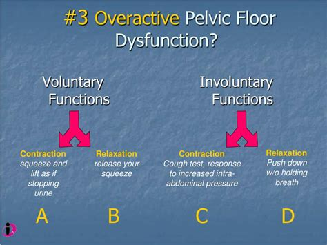 high tone pelvic floor dysfunction ppt physical therapy management of dysmenorrhea and