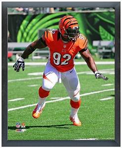 "James Harrison 2013 Bengals - 11"" x14"" Photo in a ..."