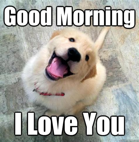 Love You Memes - good morning i love you actual puppy quickmeme