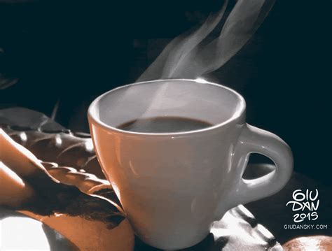 how hot coffee giudanskycom gifs find share on giphy