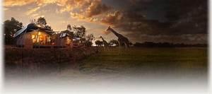 Zoofari Lodge Accommodation Taronga