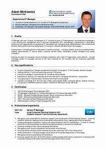 adam mickiewicz cv english version With english resume