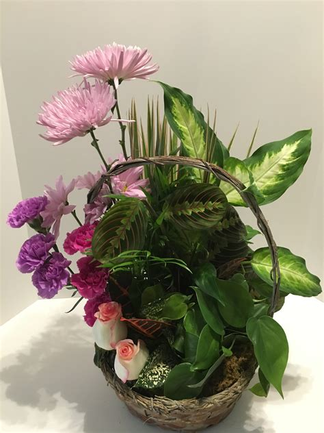 large dish garden with flowers flowers and gifts