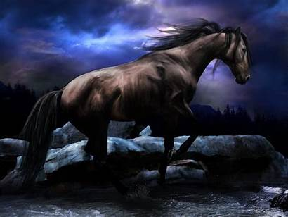 Horses Computer Horse Christmas Desktop Wallpapers Animals