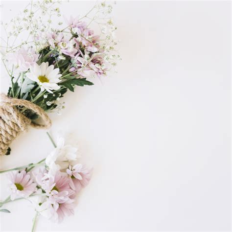 White Flower Background White Flower Vectors Photos And Psd Files Free