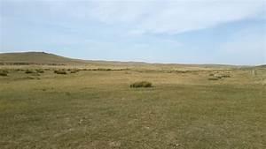 Free photo: Grass Plain - Grass, Field, Green - Free ...  Plain