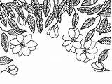 Coloring Magnolia Dribbble Adult sketch template