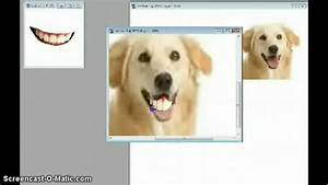 Photoshop- Dog with Human Teeth - YouTube