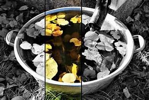 Entwässerung Grundstück Regenwasser : zuverl ssiger regenwasserablauf ein wichtiges thema f r jeden immobilienbesitzer ~ Buech-reservation.com Haus und Dekorationen