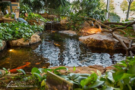 Aquascape Ecosystem - water gardening store and inspiration center pond