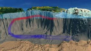 12 Best Carbon Cycle Images On Pinterest