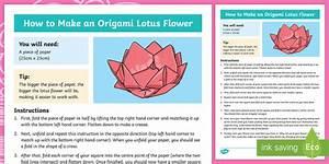Ks2 Origami Lotus Flower Craft Instructions  Teacher Made