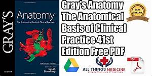 Gray's Anatomy The Anatomical Basis of Clinical Practice ...