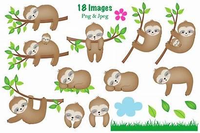 Sloth Clipart Nursery Graphics