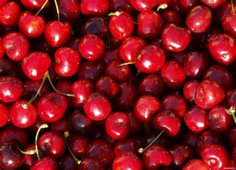 De Color Vino De Color Rojo 1280 X 1024