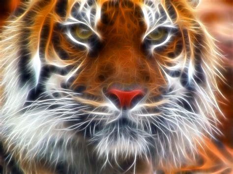 Amur Tiger Fractal Tigers Wallpaper Fanpop