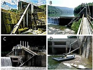 Eel Ladders At Hydroelectric Dams On The Shenandoah River