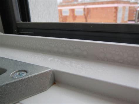 Wasser An Den Fenstern by Josko Safir Fenster Fensterforum Auf Energiesparhaus At
