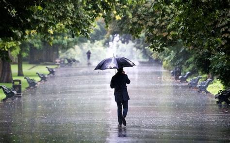 ken thompson  forecasts  rain