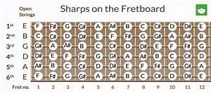 Basic Music Theory  Whole Step  U0026 Half Step   Sharps