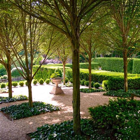 Magnificent Garden Formal Yet Inviting by 9 Best Images About Garden On Gardens