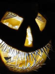 Cute Carving Pumpkins Ideas by Pumpkin Carving Ideas On Pinterest Pumpkin Carvings