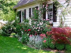 Kleine Bäume Für Vorgarten : vorgarten mit pflanzen gestalten 40 ideen wie sie ein ~ Michelbontemps.com Haus und Dekorationen