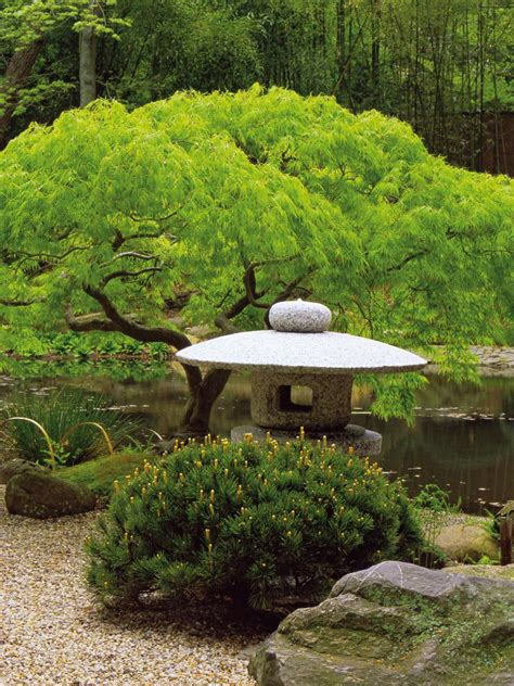 japanese style landscaping simple style the subtle appeal of japanese gardens landscaping ideas and hardscape design hgtv
