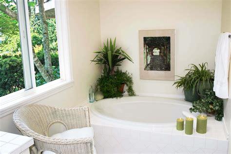plante pour chambre plante pour salle de bain atlub com
