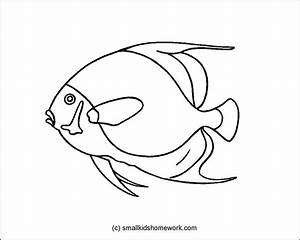French Angel Fish Outline Picture | Outline Pictures ...