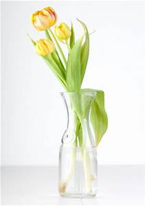 Tulpen In Vase : dekoidee 5 tulpen auf moos dekoideen mit tulpen vase deko ~ Orissabook.com Haus und Dekorationen