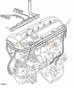 Bmw Wiring Harnes Diagram