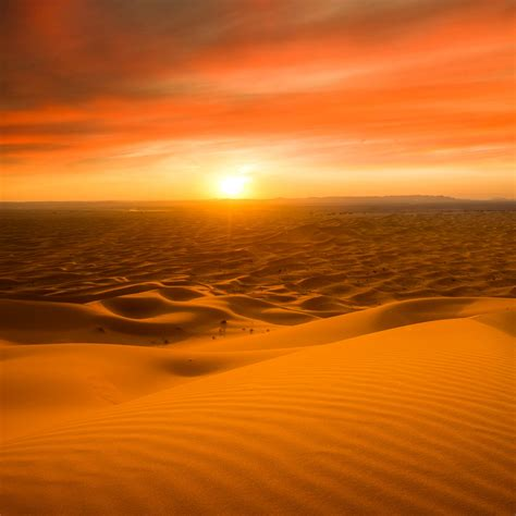 wallpaper sahara desert sand dunes sunset  nature