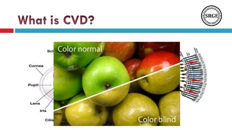color vision deficiency an evaluation of computer based color vision deficiency