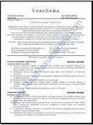Professional Analyst Resume Sample Provided By Real Resume Help Professional Resume Sample Professional Summary Resume Sample Sample Summary For Resume Sample How To Create A Professional Resume 6