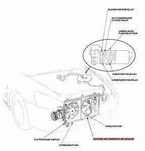 2010 Honda Pilot Fuses  Honda  Auto Wiring Diagram