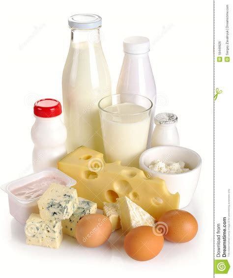 why are eggs dairy dairy products and eggs royalty free stock image image 18449926