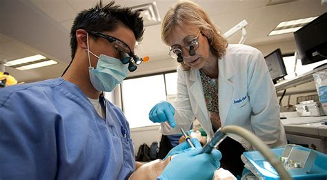 dmd students college dentistry university florida