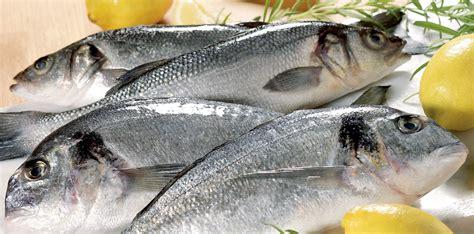 cuisine bar poisson poisson entier poissons entiers et poissons frais